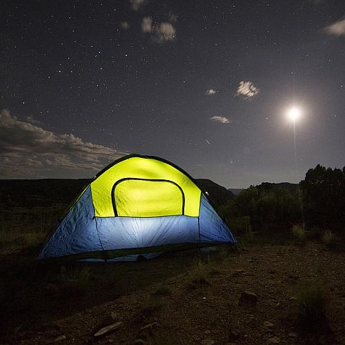 Event im Wildnis Camp